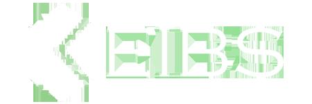 KEIBS LLC
